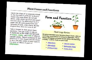 Writing essays custom literature 9th edition pdf